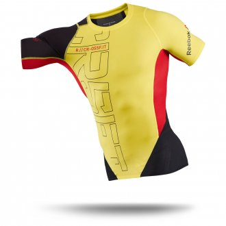 Pánské tričko Reebok RCF MDWT SS B84019