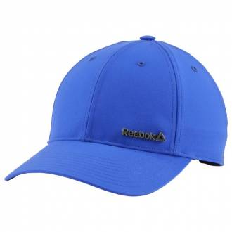 ACT FND BADGE CAP