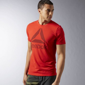 Pánské tričko Reebok Workout Ready Big Logo Supremium Tee AY3483